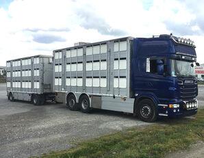 SCANIA R620 V8 For animal transport - do zywca camión para transporte de ganado + remolque para transporte de ganado
